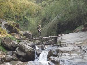 Jonah bamboo bridge