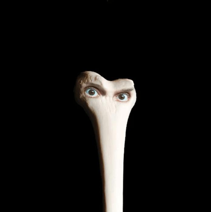Juana Molina  – Halo