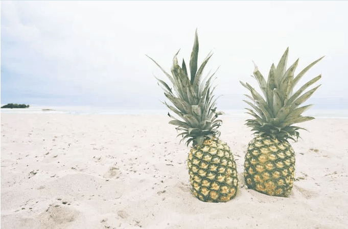 pineappleBeach