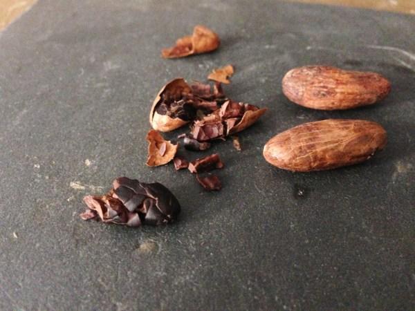 cacao2
