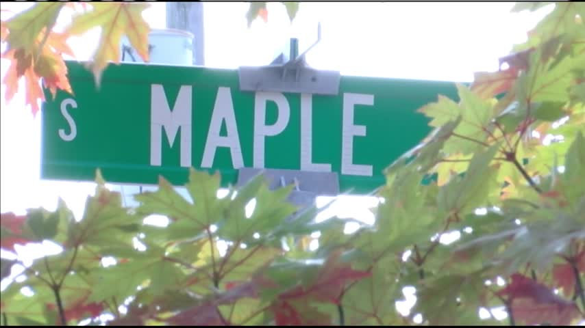 Maple Leaf 2016 Preview_92288042-159532