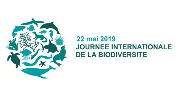 """Résultat de recherche d'images pour """"journée mondiale de la biodiversité 2019"""""""