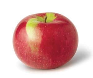 Apple-McIntosh