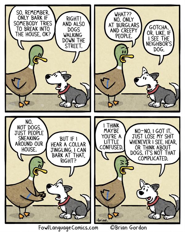 Funny Dog Barking Jokes