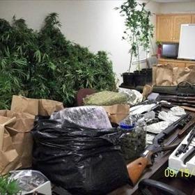 Newton Co. marijuana bust_-7236472511115737234