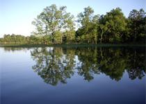 Sundown on Lake Maumelle_-1927023156124302909