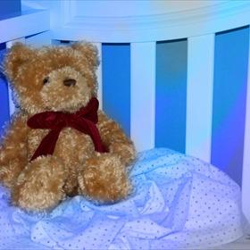 Teddy Bear_4070353356294867387