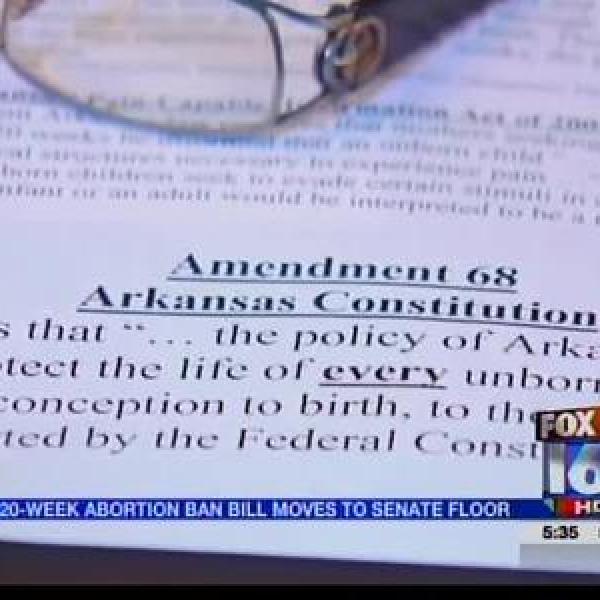 Senate Committee Advances 20-Week Abortion Bill_1833408863612847298