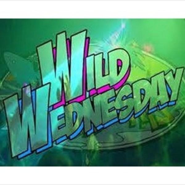 Wild Wednesday Little Rock Zoo logo_8524431440069544605
