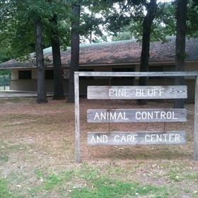 pine bluff animal shelter_-741909708133676167