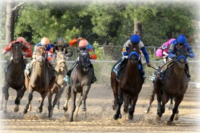 Oaklawn Park Racetrack - Hot Springs_-6250374969813940407