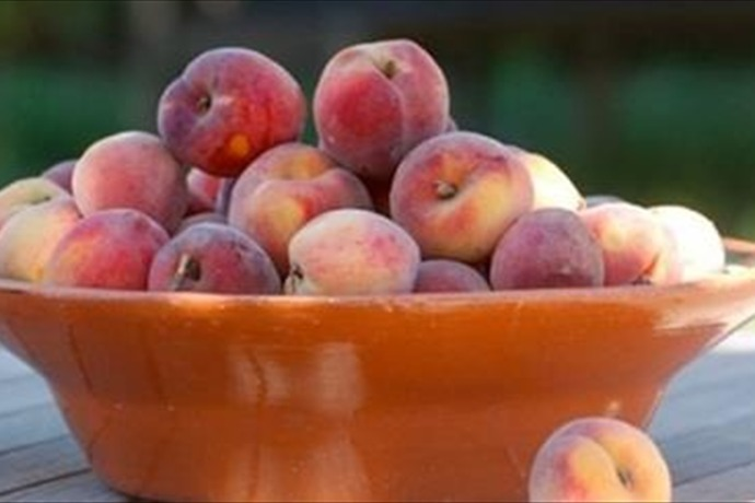 Wawona Packing Co. is recalling peaches, nectarines, plums and pluots, saying they may have been infected with Listeria. (via CN_-3164888973972059001