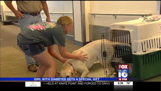 Girl With Diabetes Reunites With Special Dog_3831184271791311888