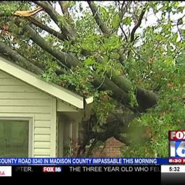 Madison County Storm Damage_6192774635304471745