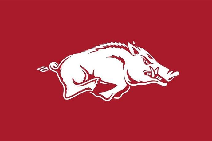 Arkansas Razorbacks Logo 2015_-6514486465558722761