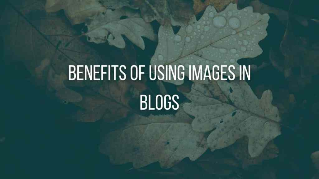 Why to use images in the blog post