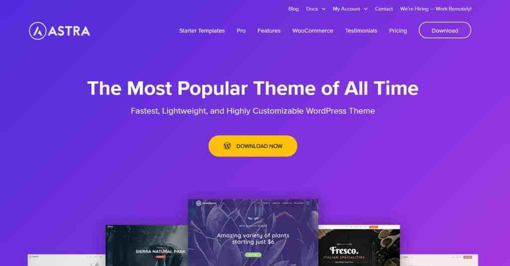 Astra - SEO friendly WordPress themes