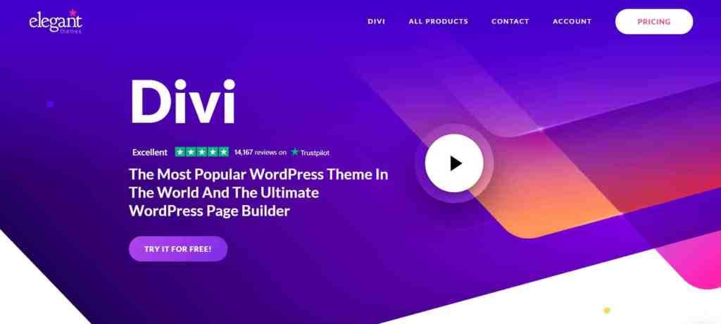 Divi - Popular SEO friendly WordPress themes
