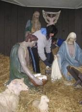 2008-christmas-nativity-32