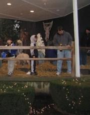 2008-christmas-nativity-38
