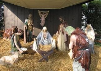 2008-christmas-nativity-39