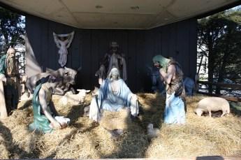 2010-christmas-nativity-31