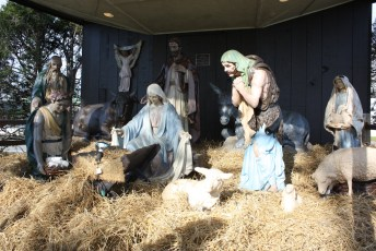 2011-christmas-nativity-13