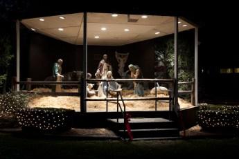 2012-nativity-setup-101