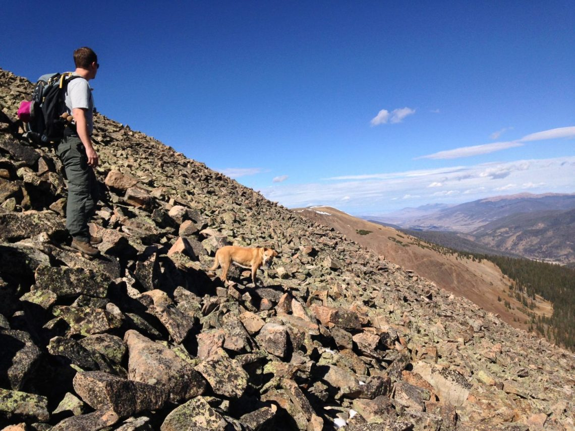Mt Guyot with a dog