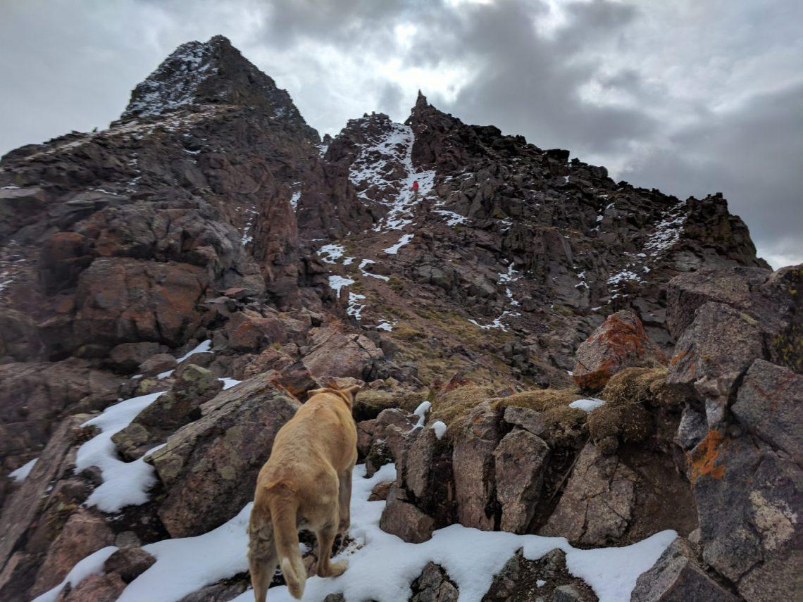 Kneeknocker Pass Peak C Gore Range