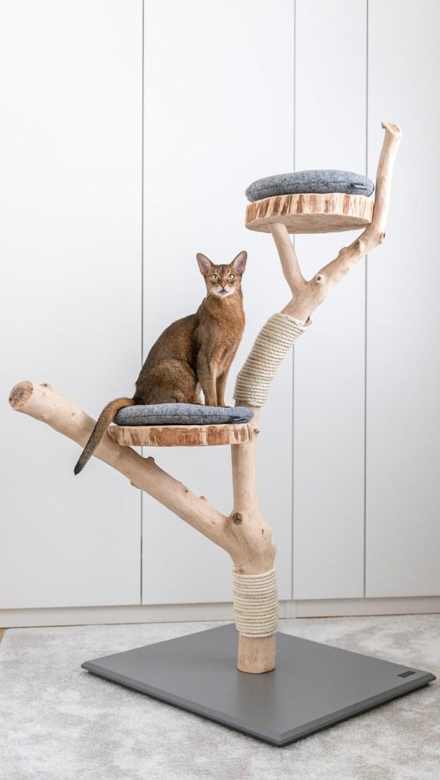 http://www.catnature.de