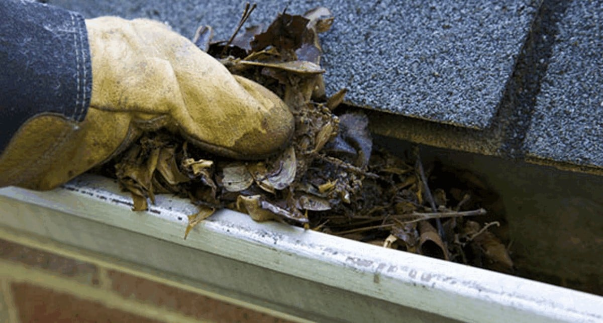 fx038 - Gutter Cleaning Services - Junk Removal