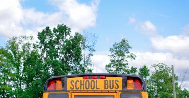 Return to school
