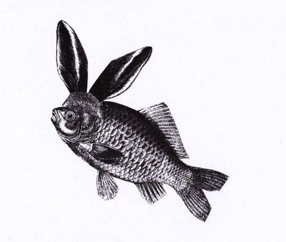 """Résultat de recherche d'images pour """"carpe et lapin"""""""