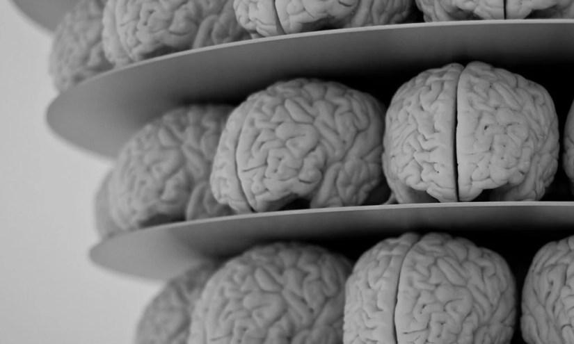 Multi-Sensory Environments and the Impact on Brain Development
