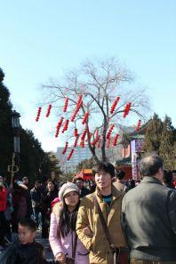 china-urlaub-erfahrungen-peking-alles-geschmueckt