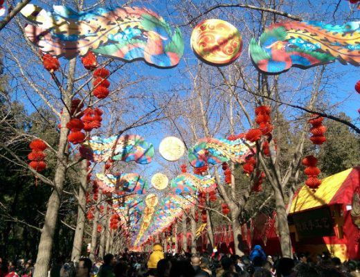 China Urlaub Erfahrungen Peking Ditan Park