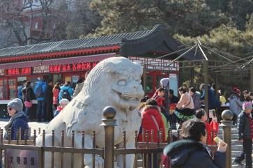 china-urlaub-erfahrungen-peking-kaiserlicher-himmelspalast-wanfuijing-gasse-28