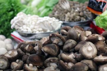 china-urlaub-erfahrungen-beijing-cooking-school-13