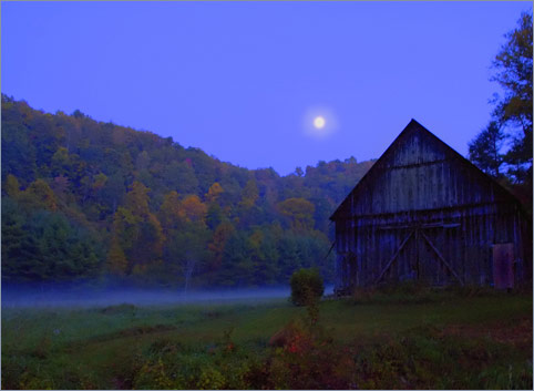 Night Barn: A Certain Stillness