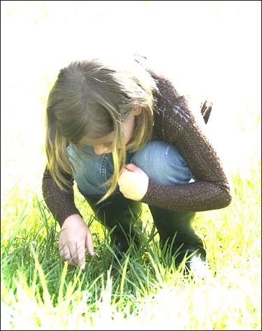 abbygrass.jpg