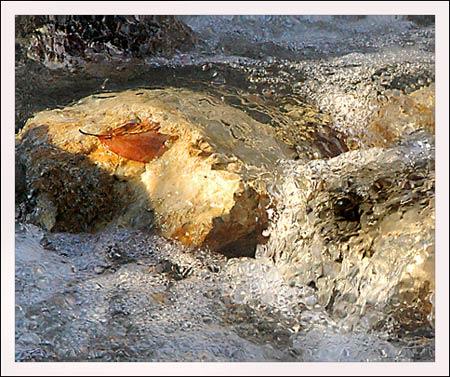 creekdetail3.jpg