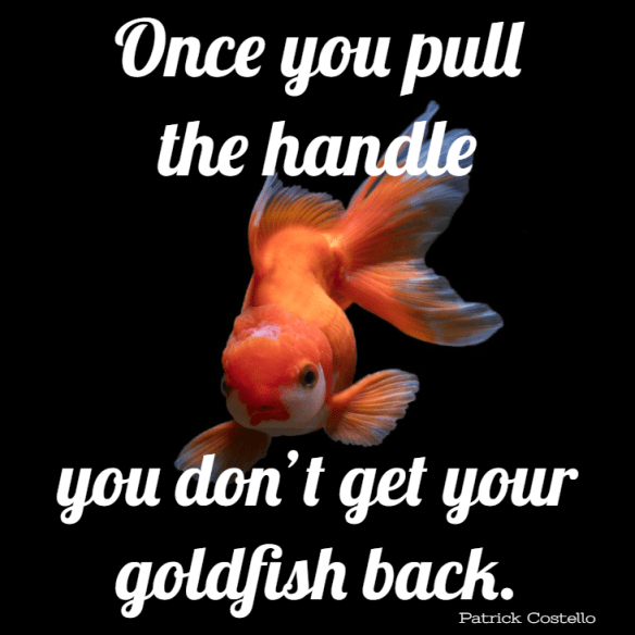 Once you pull the handle you don't get your goldfish back.