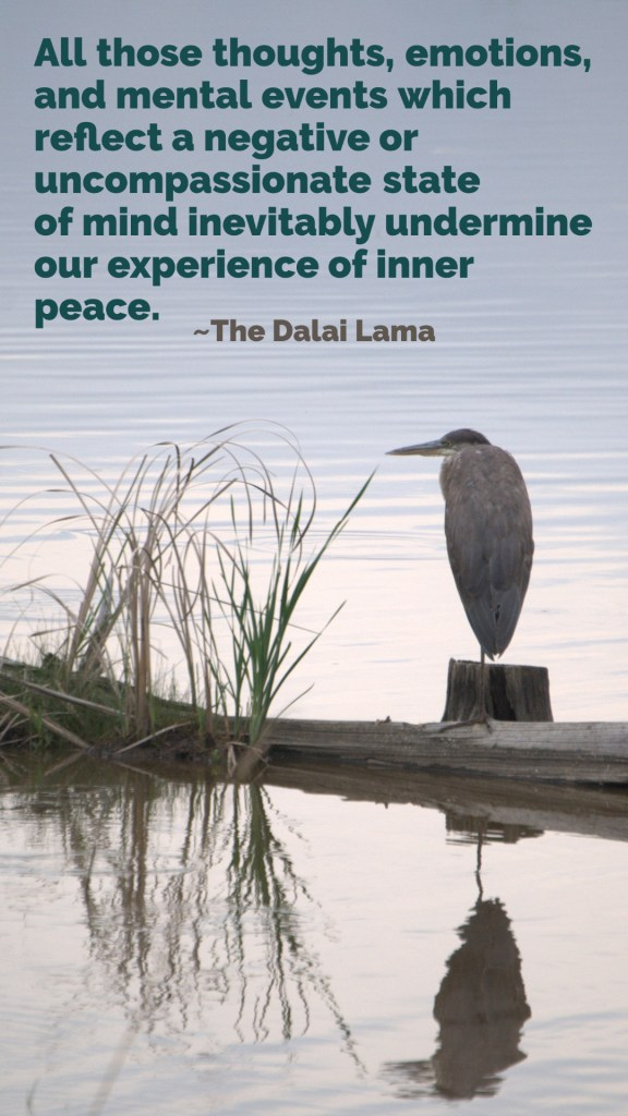 All those thoughts, emotions, and mental events which reflect a negative or uncompassionate state of mind inevitably undermine our experience of inner peace. The Dalai Lama