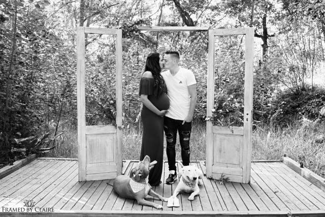 Maternity photo shoot with pets
