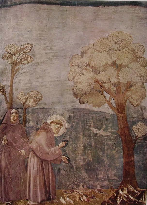 Giotto: La predica agli uccelli