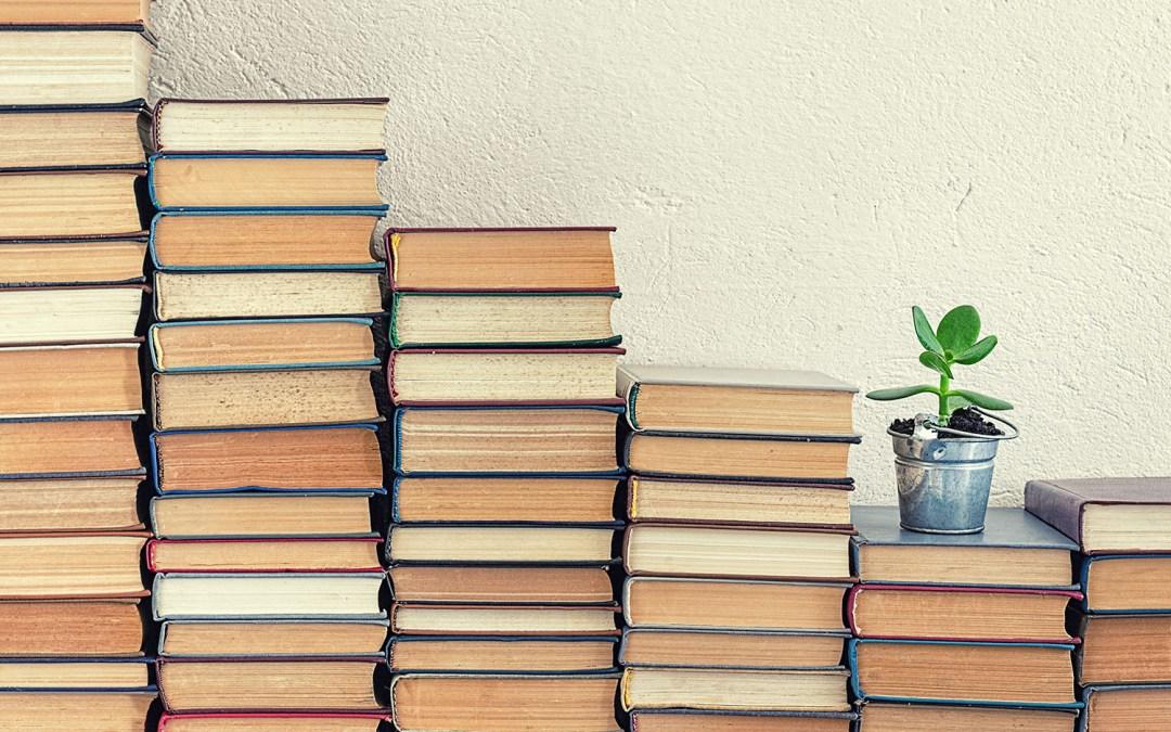 Libri da leggere in estate per chi ha poco tempo