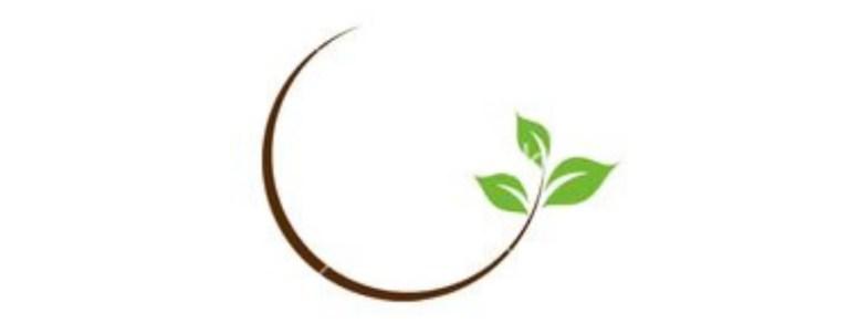 Quattro motivi per cui la crisi ecologica è una faccenda filosofica