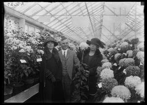 Grace Coolidge with Secretary of Agriculture Henry Cantwell Wallace. Although the woman on his right side is not identified, I am fairly certain it is his wife, May Brodhead Wallace. (Photo from the Library of Congress site)