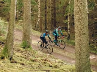 BikeRadar Rides | Exploring Sweden's gravel roads